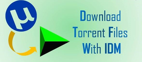 Best Way to Download the Torrent files with IDM